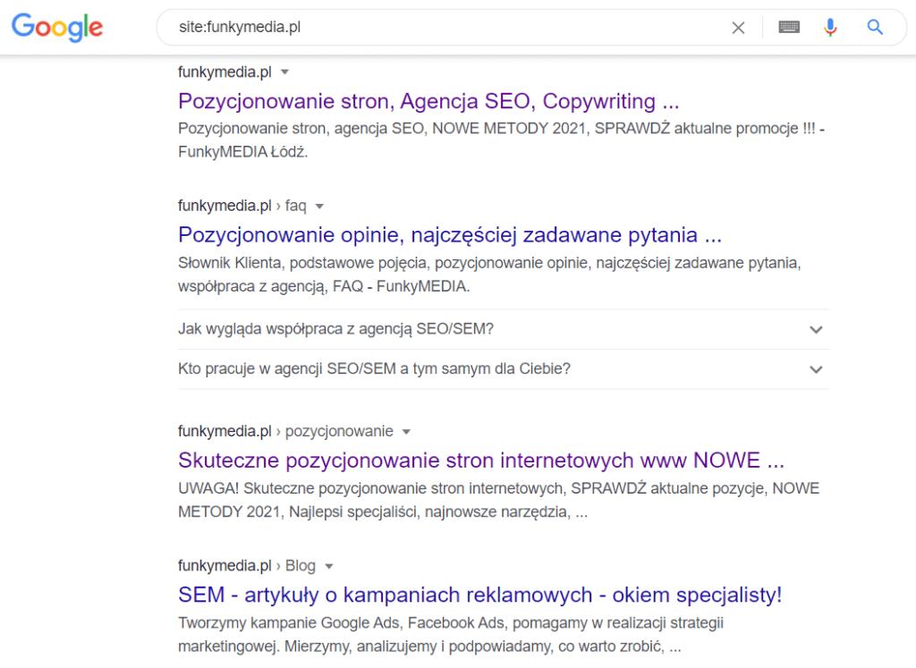 Czy dana domena jest widoczna w Google?