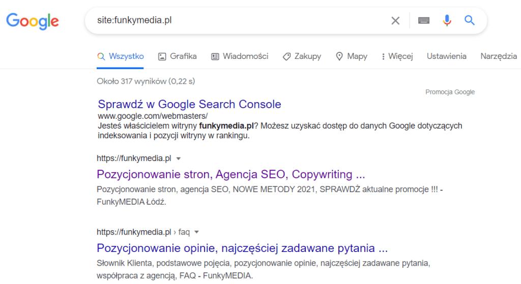 Jak sprawdzić, czy udało się dodać stronę do wyszukiwarki?