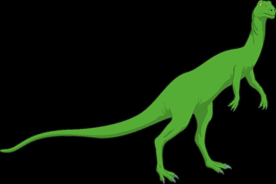 Czym jest strategia pozycjonowania long tail?