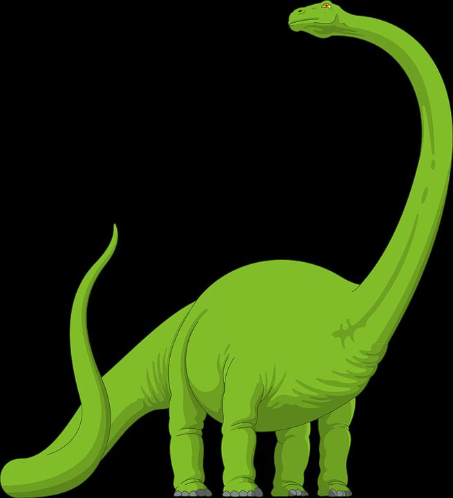 Jakie efekty daje long tail? Frazy poprawiające SEO